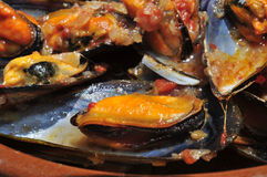 Mussels. Closeup of a plate with mejillones a la marinera, spanish mussels in marinara sauce royalty free stock image