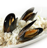 Mussels Royalty Free Stock Photo