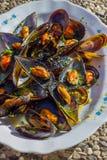Mussels Zdjęcie Stock