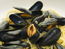 Mussels Royalty Free Stock Photos
