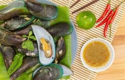 mussels Zdjęcie Royalty Free