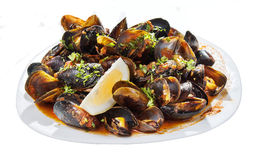 mussels obrazy stock