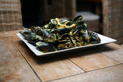 Mussels. Seafood a dish on a table at restaurant Royalty Free Stock Photos