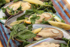 Mussels, Almonds and Spinach Stock Images