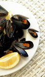 Mussels Royalty Free Stock Images