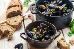 Mussels as a dinner by the sea stock photography
