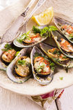 Mussels Baked with Cheese and Herbs royalty free stock images