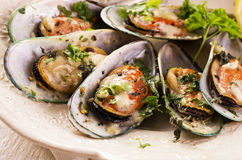 Mussels Baked with Parmesan and Herbs royalty free stock photo