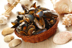 Mussels in basket. Cooked fresh mussels in basket Royalty Free Stock Images