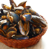 Mussels in basket. Cooked fresh mussels in basket Stock Photo