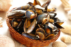 Mussels in basket. Cooked fresh mussels in basket Stock Image