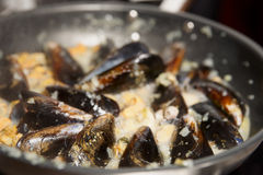 Mussels being fried in pan Stock Photos