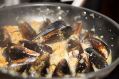 Mussels being fried in pan Royalty Free Stock Photo