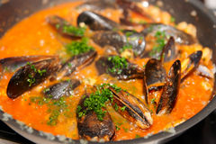 Mussels being fried in pan Royalty Free Stock Photography