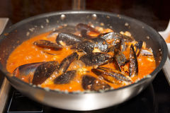 Mussels being fried in pan with tomato sauce Stock Images