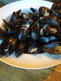 Mussels in a bowl. Fresh pei mussels in a bowl Stock Photography