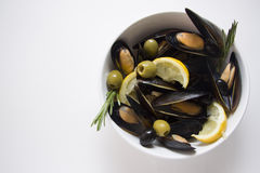 Mussels bowl on white Stock Photography