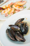 Mussels in the bowl in a white wine sauce Stock Images