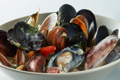 Mussels in the bowl in a white wine sauce Royalty Free Stock Photos