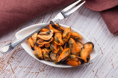 Mussels in bowl Stock Image