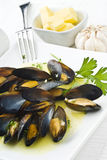 Mussels with Butter Sauce Royalty Free Stock Photography
