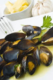 Mussels with Butter Sauce Stock Image