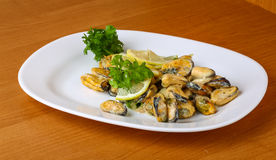 Mussels in butter sauce Stock Images
