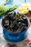 Mussels with buzara sauce Royalty Free Stock Images