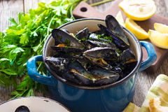 Mussels with buzara sauce Stock Images