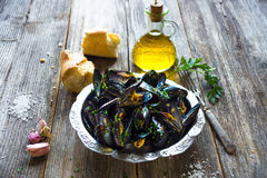 Mussels with buzara sauce Stock Image