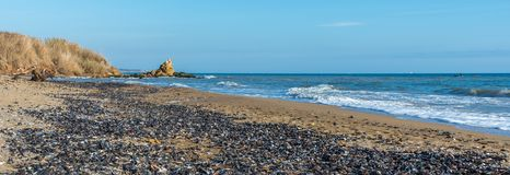 Mussels cast ashore after a storm. Sea coast dotted with mussel shells on the seashore near Odessa, Ukraine stock photos