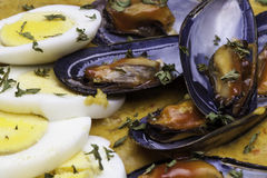 Mussels in Chili Sauce Close Up Royalty Free Stock Photo