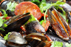 Mussels with chorizo and parsley in a pan Stock Photos