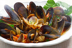 Mussels and Clams Royalty Free Stock Photos