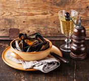 Mussels clams and white wine Stock Images