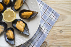 Mussels. Stock Images