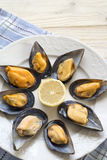 Mussels. Royalty Free Stock Images