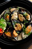 Mussels in coconut milk with lemongrass Royalty Free Stock Images