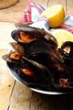 Mussels cook at steam technique culinary art Royalty Free Stock Photos