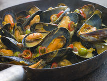 Mussels Cooked Bangladeshi Rezala Style Stock Photo