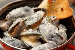 Mussels cooked with creamy sauce and served in metal pot Royalty Free Stock Photography