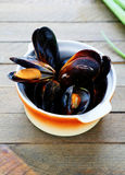 Mussels cooked in a saucepan Royalty Free Stock Photos