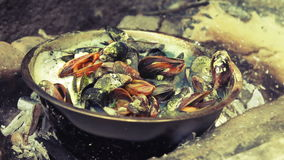 Mussels cooked on a sea beach stock video footage