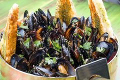 Mussels cooked with white wine. In copper utensils royalty free stock images