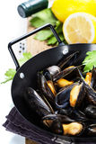 Mussels Royalty Free Stock Photography