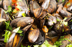 Mussels cooked with white wine sauce Stock Photo