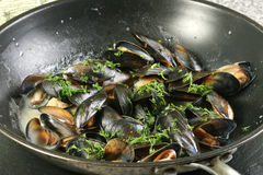 Mussels cooked in white wine sauce Stock Photos