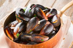 Mussels cooked in wine sauce with herbs in a frying pan Stock Photos