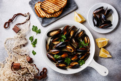 Mussels in cooking pan, toasted bread and fishnet. Mussels in cooking pan with parsley, toasted bread and fishnet on white background stock photo