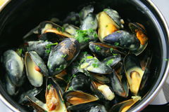 Mussels with the cream Stock Photography